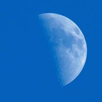 Half Moon Cover Art